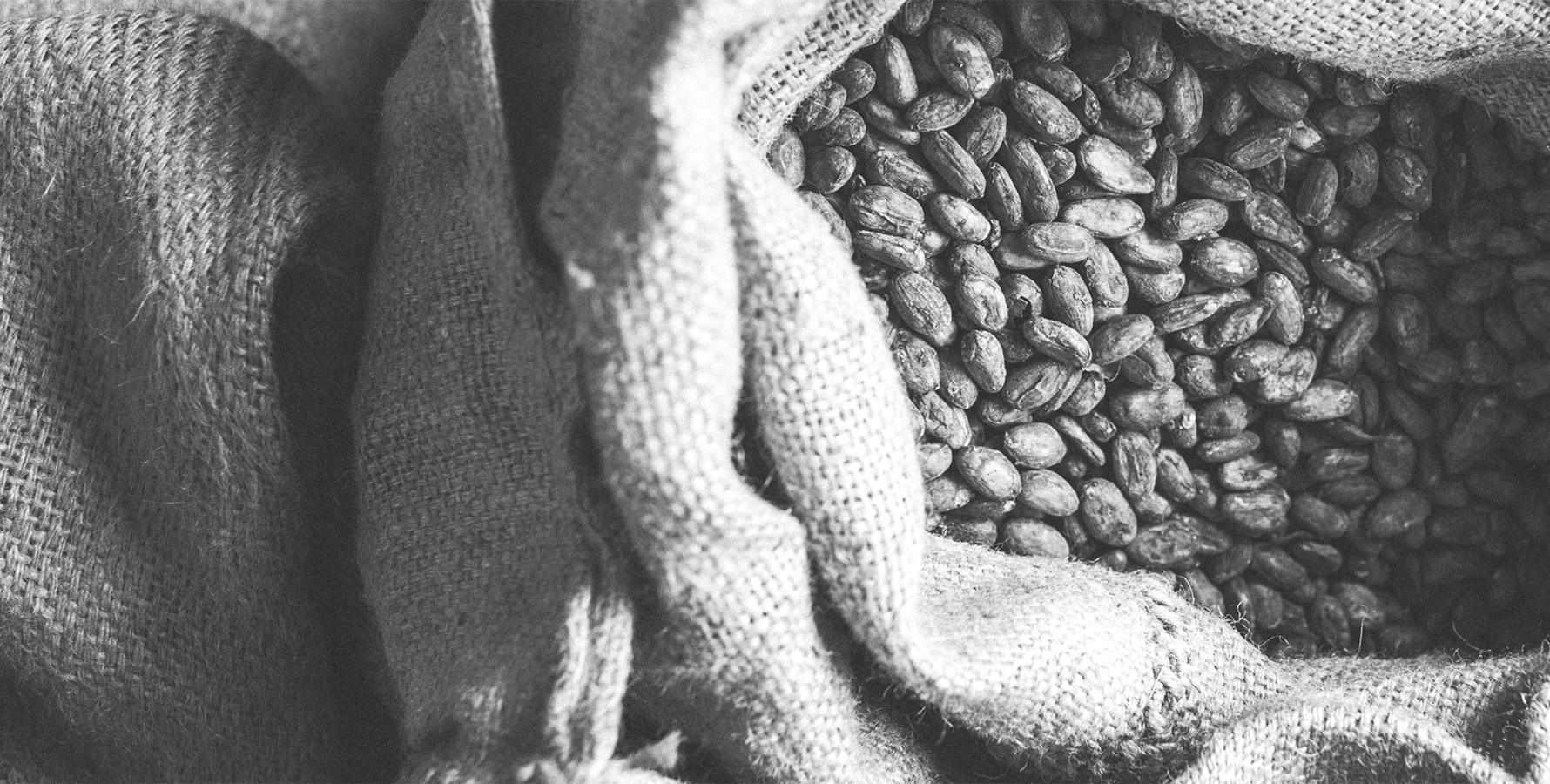 Bean-to-bar Laia chocolate maker bask country bayonne chocolate