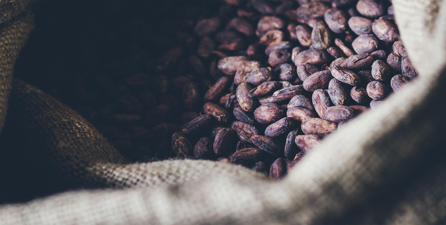 Laia chocolaterie Baigorry