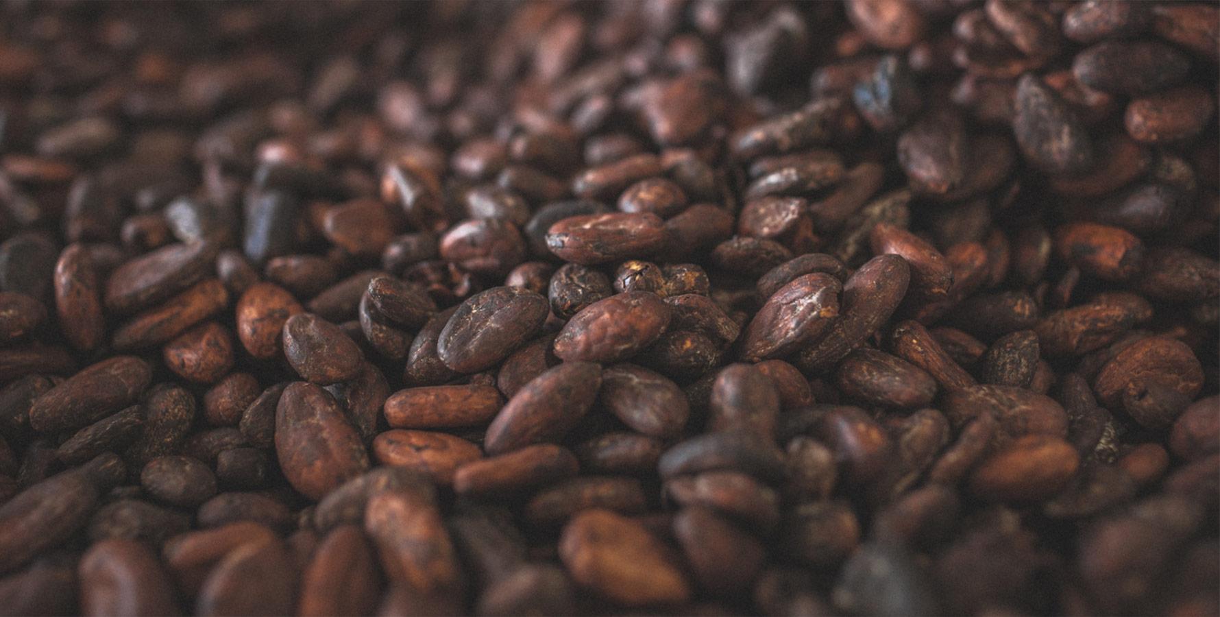 Laia cacao et chocolat